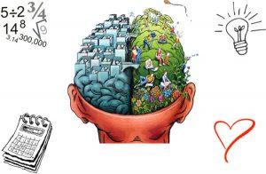 Emisfero sinistro e destro del cervello