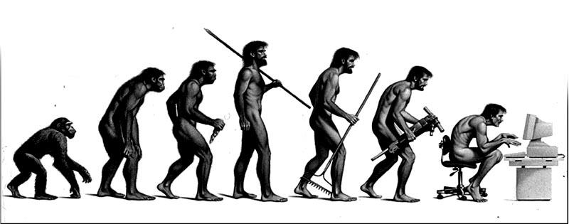 Individui o gruppo? Evoluzione