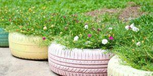 Pneumatici in giardino