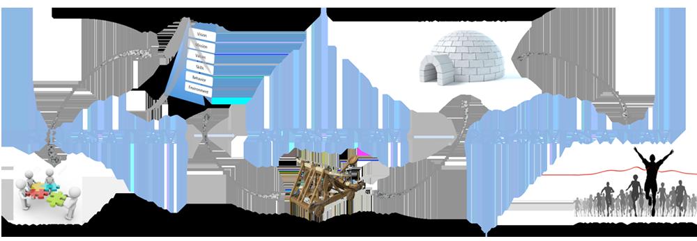 Team Coaching Program
