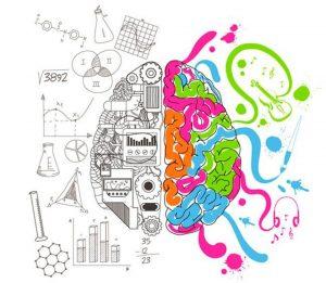 Il cervello che si fonde in due mondi: razionalità ed emotività.